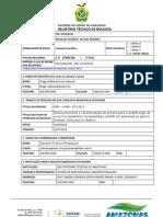 Relatório Técnico Parcial PAIC_ThiagoWilliam