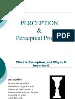 Perception Revised