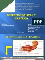 SECRECIÓN DE LA SALIVA