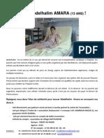 Dossier AMARA Abdelhalim.pdf