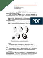 Traumatismos en Urologia