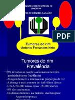 36270300 Tumores Do Rim