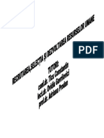 38305299 Recrutarea Selectia Si Dezvoltarea Resurselor Umane