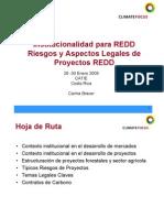 Climate Focus Institutional Lid Ad y Aspectos Legales de Diseno de Proyectos REDD_Carina Bracer