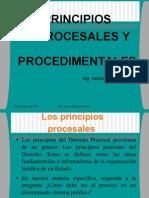 55748147 Principios Procesales y Procedimentales New
