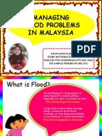 Managing Flood Problems