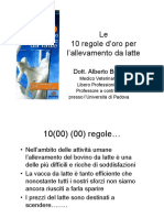 Brizzi-10-regole-feb06
