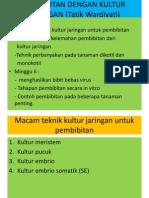 3. PRODUKSI BENIH KULJAR.pdf