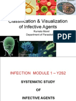 Classifiaction & Visualization of Infective Agents - Y2S2