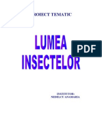 Lumea Insect El Or
