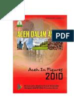 Aceh DalAm Angka 2010
