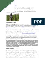 quinua sostenible.docx