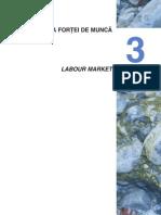 03 Piata Fortei de Munca_ro(1)