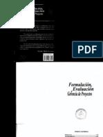 Formulacion Evaluacion y Gerencia de Proyecto