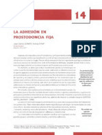 Adhesión En Odontología Restauradora(Cap 14 y 15).pdf