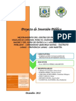 PIP Grupo 01.pdf