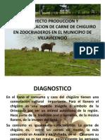 Proyecto Produccion y Comercializacion de Carne de Chiguiro