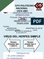 Herpes Simple,Varicela, Zoster Equipo 4