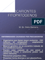 Procariontes fitopatogenos