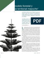 Modelo Forestal