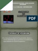 clonacion en procariotas.ppt