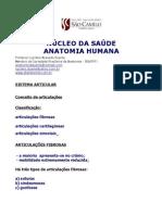ARTICULAÇOES2010