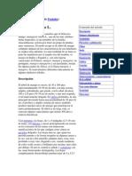 frutales 1.docx