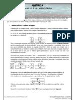 17e18-hibridizao-120209053022-phpapp02
