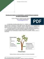 143-caracteristicas_forrajeras_megatermicas