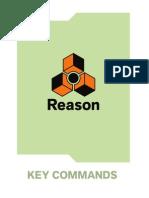 reason manual