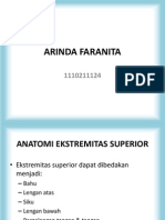 Anatomi Ekst.superior