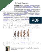 Trabalho - Evolução Humana