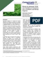 Manejo da Adubação Verde com Crotalária no Consórcio com o Quiabeiro sob Manejo Orgânico
