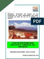 Plan Sostenibilidad Py