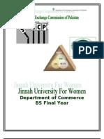 SECP Report 2010