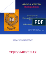 D. Muscular