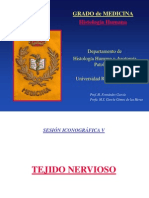 E. Nervioso