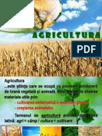 Agricultura - Prezentare PowerPoint