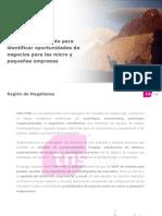 Estudios de mercado Región de Magallanes