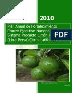 Plan Anual de Fortalecimiento Limon Persa