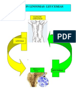 evolucion leucemias.doc