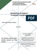 Metabolismo de lipídeos I