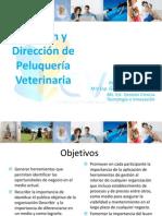 Gestión y Dirección de Peluquería Veterinaria