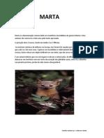Marta (Animal)- Gui a.