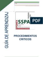 Guia SSPA Procedimientos Criticos