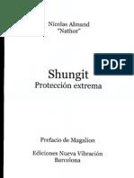 Shungit - Proteccion extrema