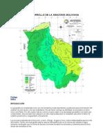 EL DESARROLLO DE LA AMAZONÍA BOLIVIANA