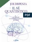 Il sè quantistico