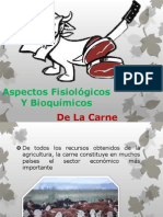 Aspectos Fisiológicos Y Bioquímicos Carne