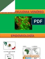 Linfogranuloma Venero y Granuloma Inguinal